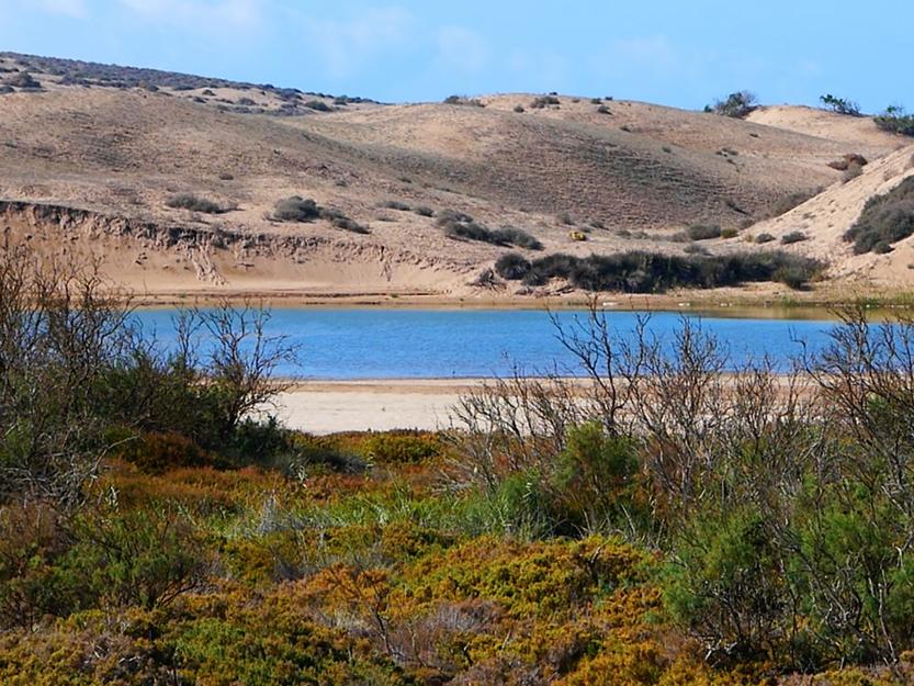 Sidi Binzarne