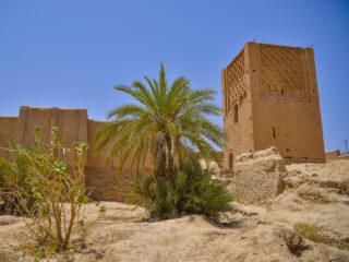 Minaret -Oasis d'Akka