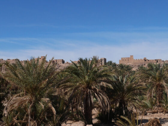 Agadir - Circuit Souss Massa