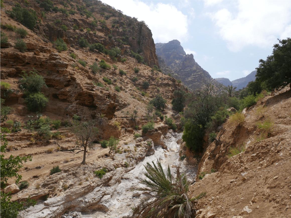 Canyon - Vallée des Cédrats