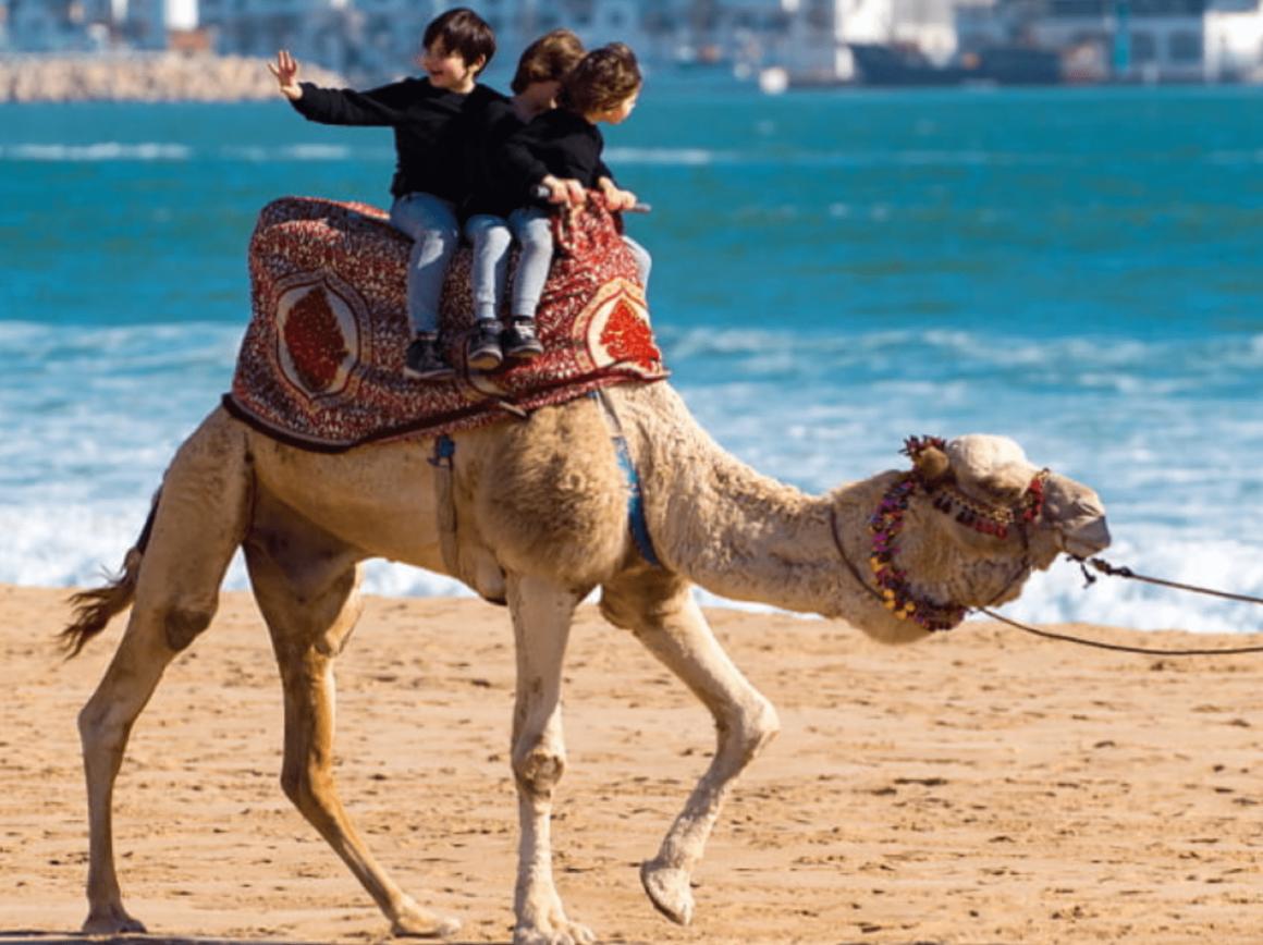 Souvenirs - Agadir