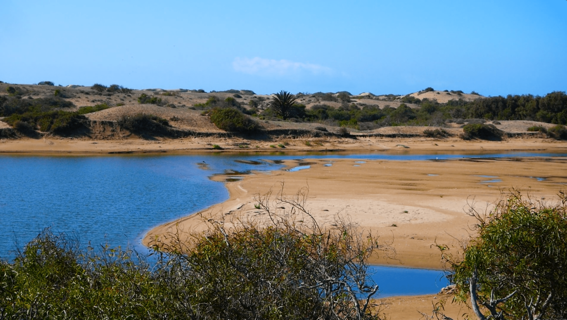 Réserve - Oued Massa
