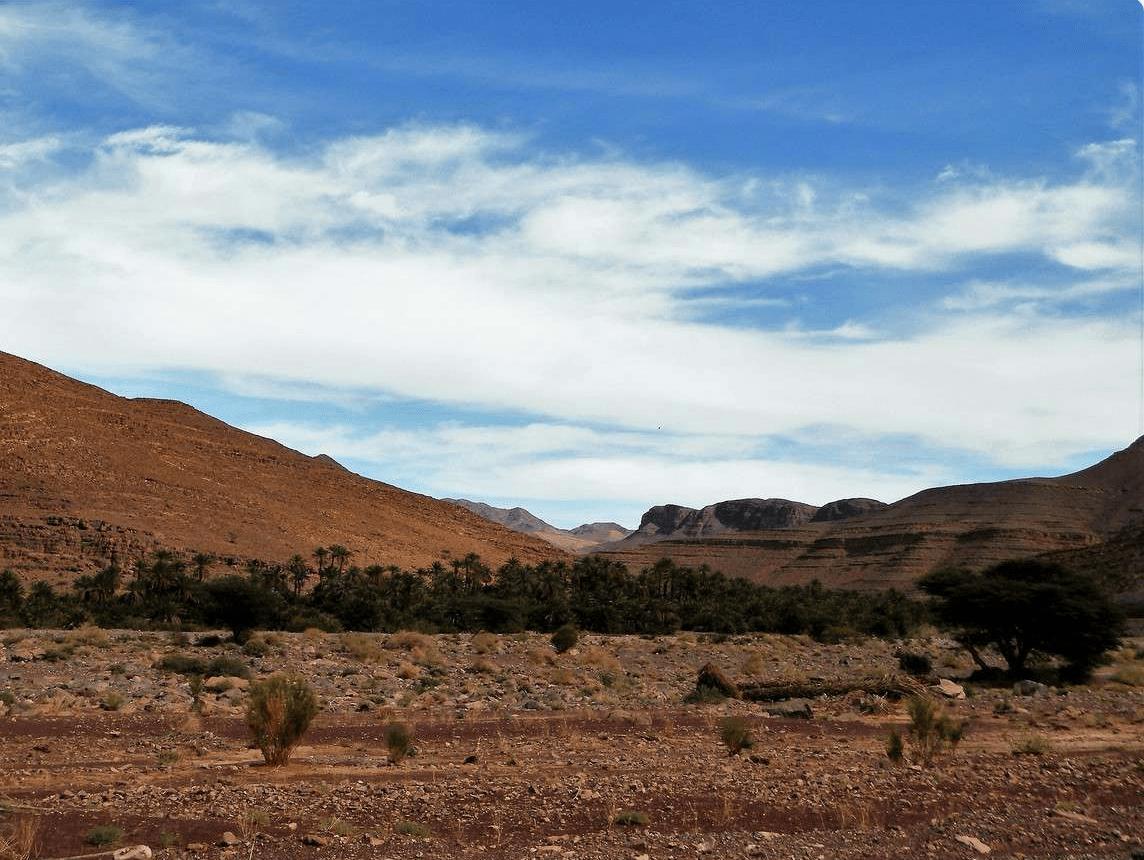 Allogoum - oasis