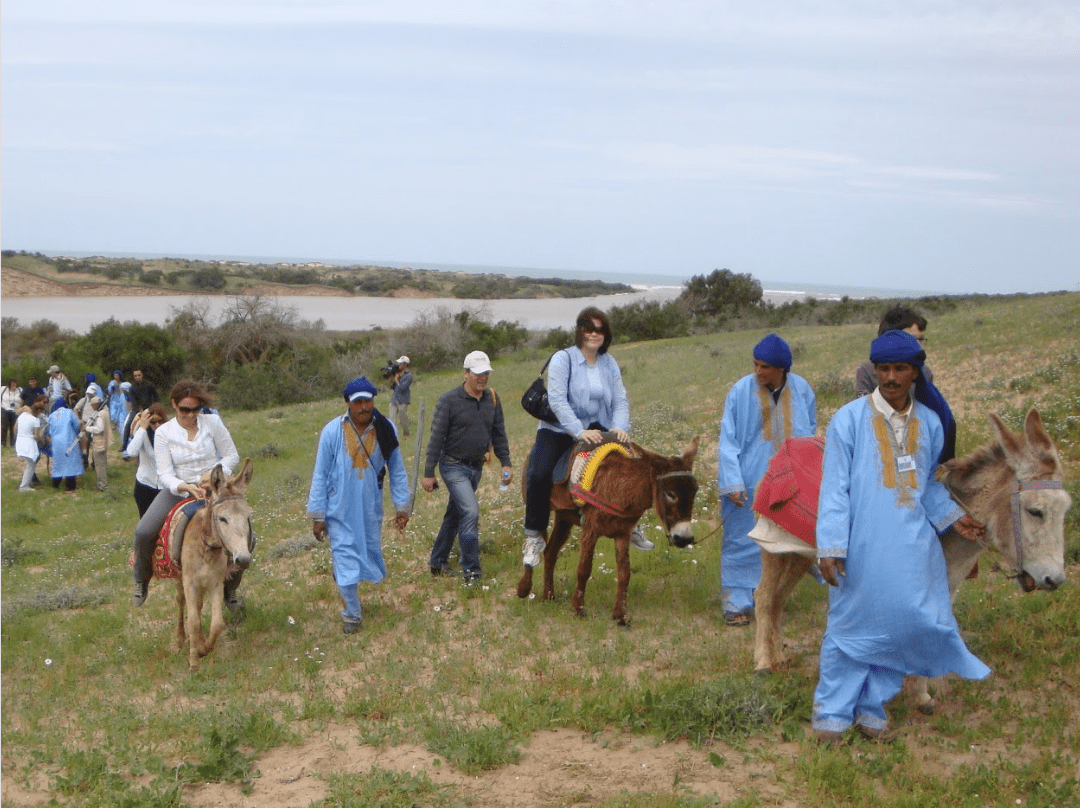 Visite guidée - Oued Massa
