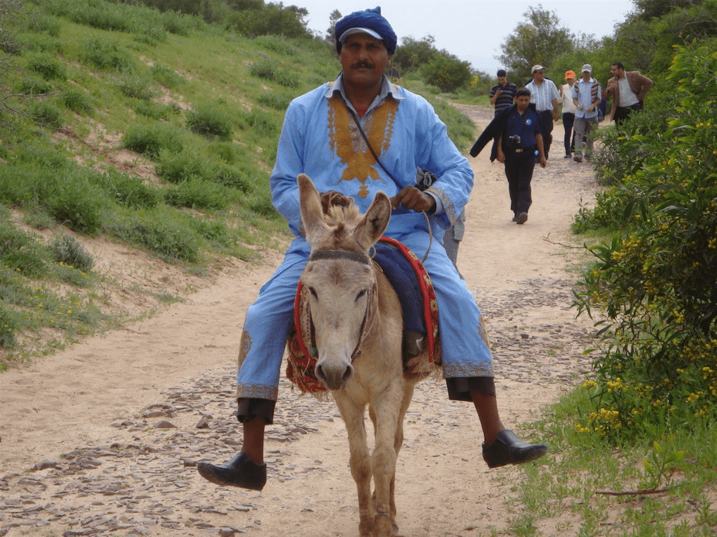 Guide- Oued Massa