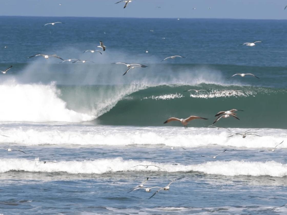 Tamri - Beachbreak