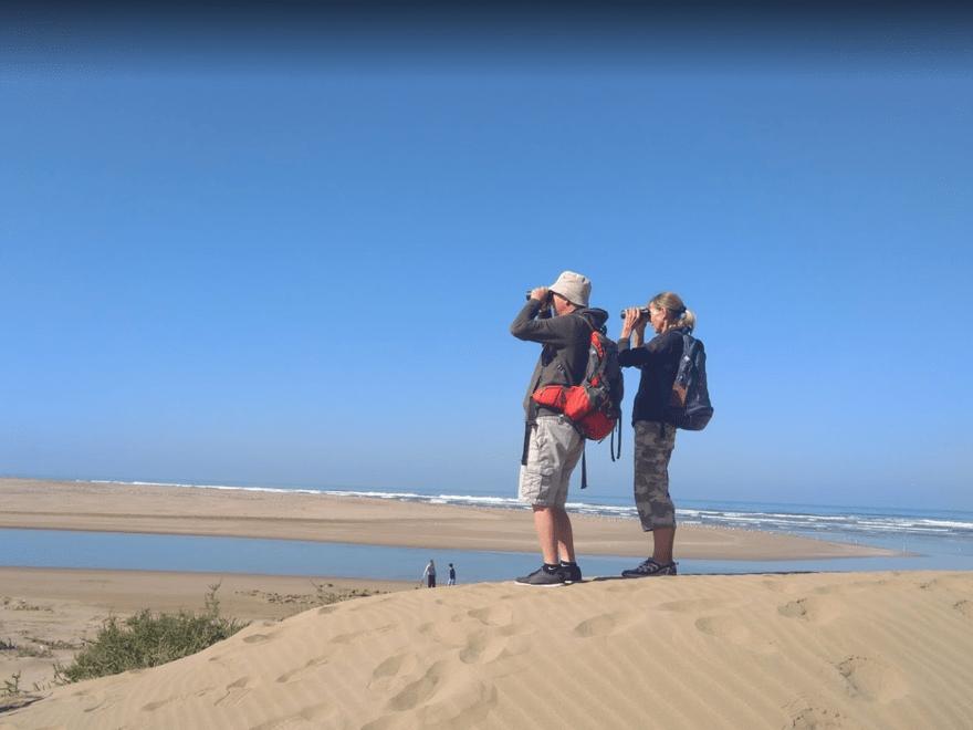 Birdwatching - Sidi Binzarne