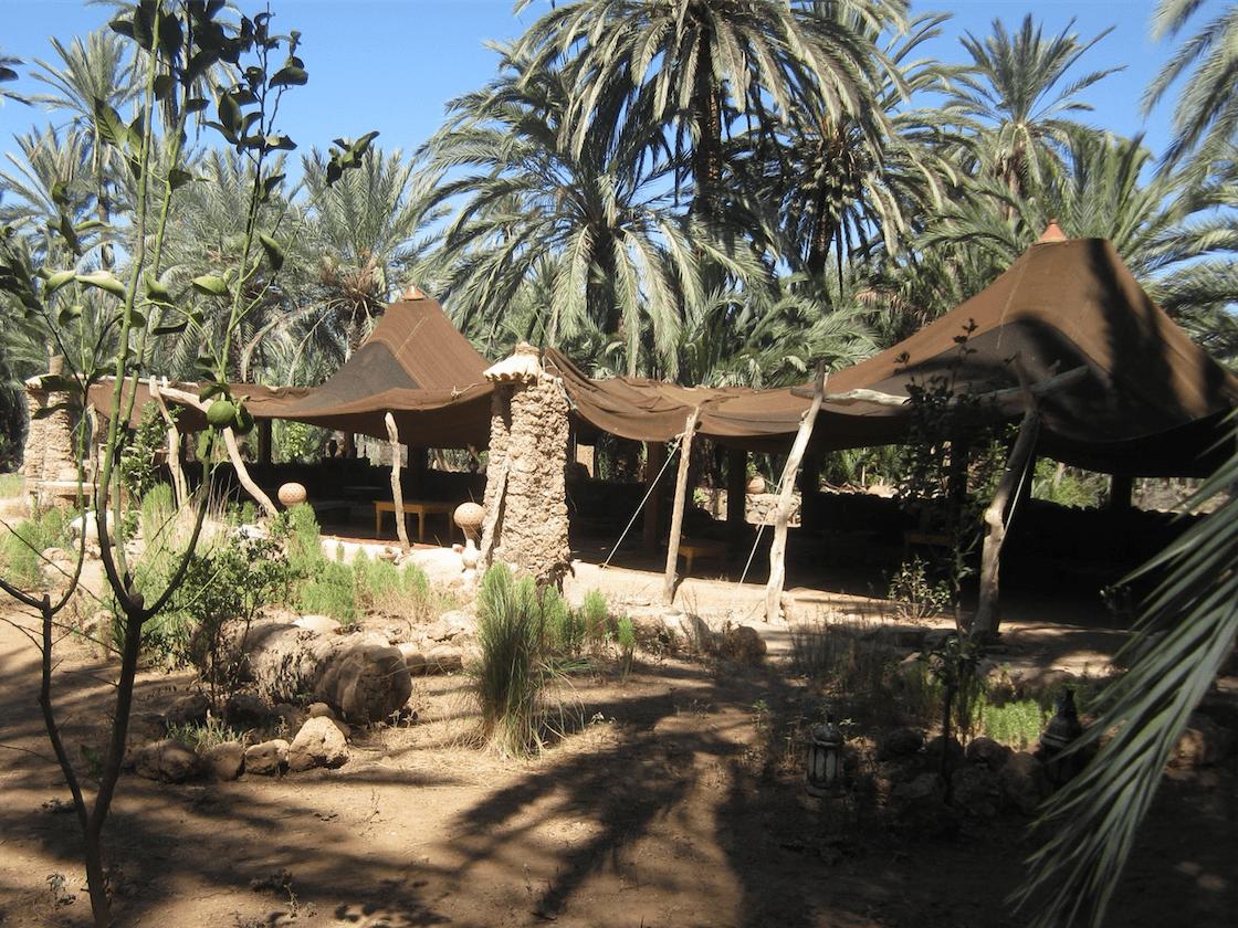 Visite - Oasis de Tioute