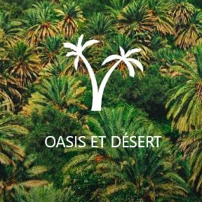 Agadir - Oasis et Desert
